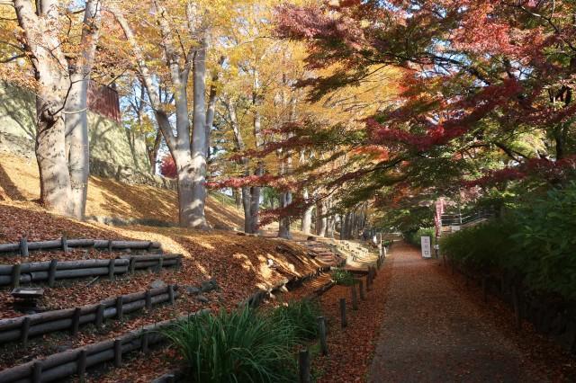 紅葉の上田城2