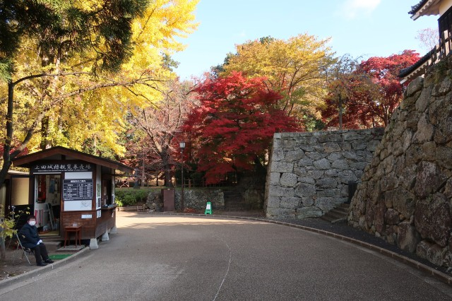 紅葉の上田城3